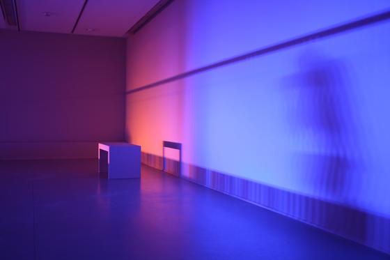 L'épaisseur-de-la-lumière-2013,-Nathalie-Junod-Ponsard,-Fondation-EDF,-Paris,-France---Photo33-Laurent-Lecat