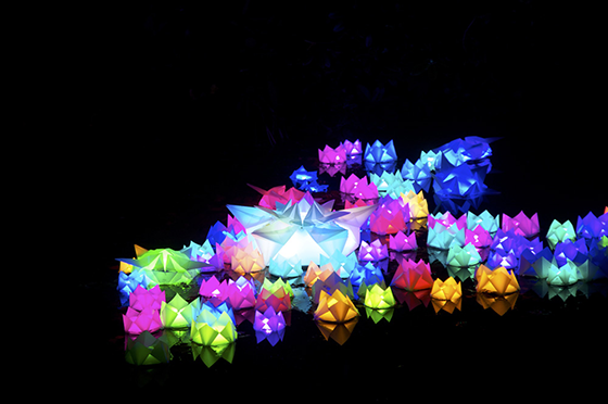 Luminale-2014-Water lily installation in the 'Palmengarten' by Luminauten - Photo © Messe Frankfurt