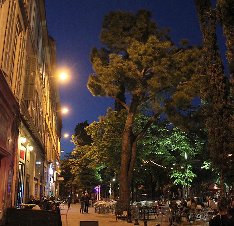 Cours-Julien-Photo-Vincent-Laganier-5