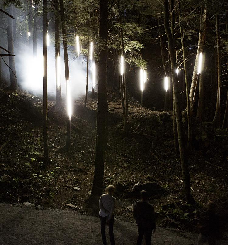 Foresta-Lumina-Parc-de-la-Gorge-Coaticook-Quebec-©-Moment-Factory-10