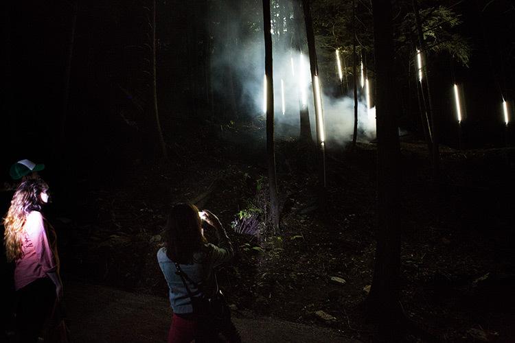 Foresta-Lumina-Parc-de-la-Gorge-Coaticook-Quebec-©-Moment-Factory-11