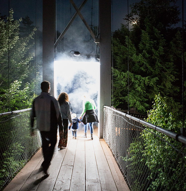 Foresta-Lumina-Parc-de-la-Gorge-Coaticook-Quebec-©-Moment-Factory-23