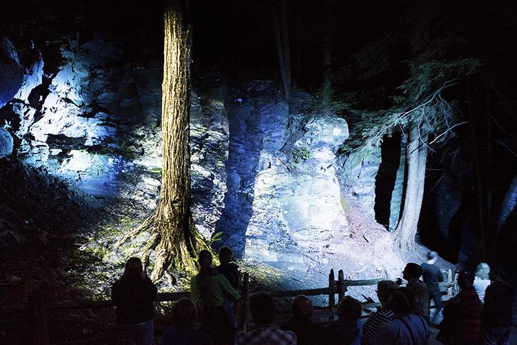 Foresta-Lumina-Parc-de-la-Gorge-Coaticook-Quebec-©-Moment-Factory-7
