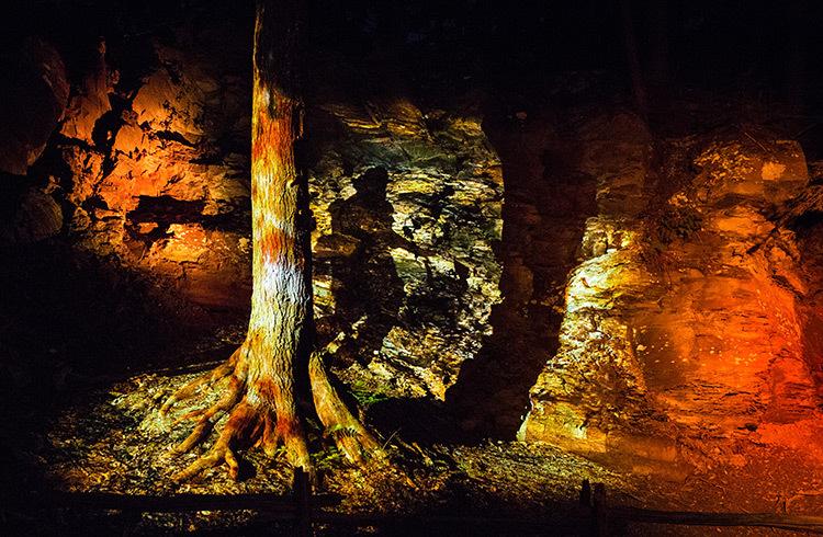 Foresta-Lumina-Parc-de-la-Gorge-Coaticook-Quebec-©-Moment-Factory-9