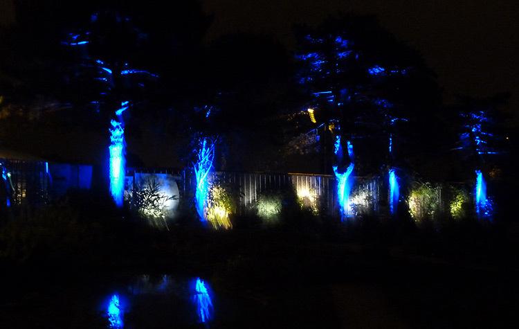 Nuits féériques du jardin des plantes de Nantes aux JNL - Light ZOOM ...